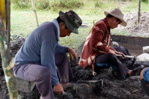 7. Tenaga lokal menggali